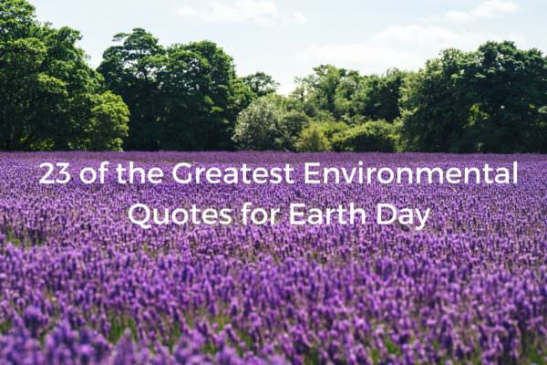 These 23 environmental quotes are perfect for Earth Day.