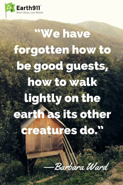 This environmental quote from Barbara Ward is so true. We need to learn to walk lightly upon the Earth.