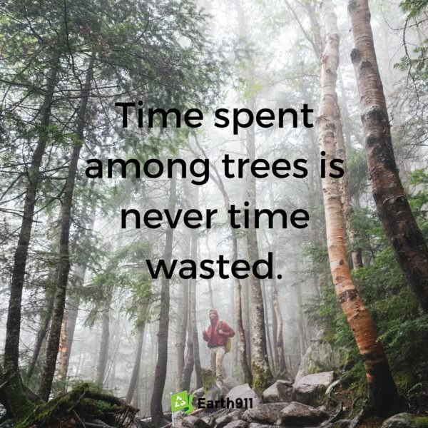 Ain't this the truth. I love running through the forests exploring the environment.