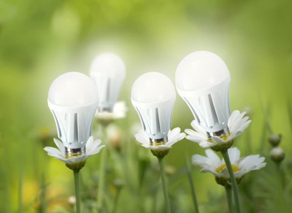 LED light bulbs like flowers